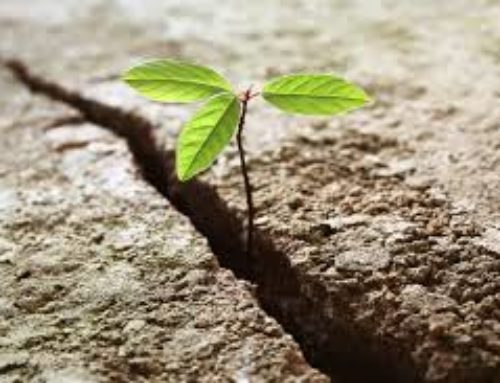 Resilience – needed today more than ever!